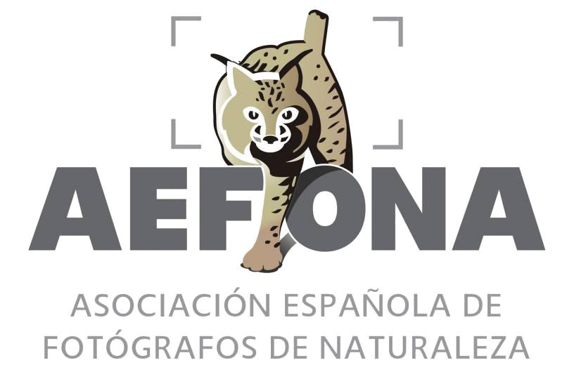 aefona.org/